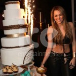 Ice Fountains Celebrities Miley Cyrus Birthday